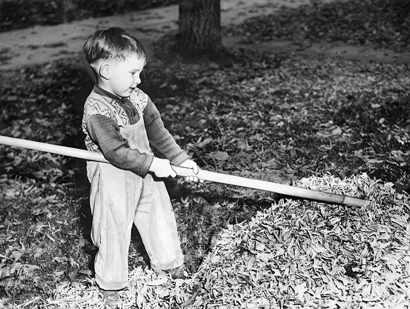 Courtney Mile as child, raking leaves.