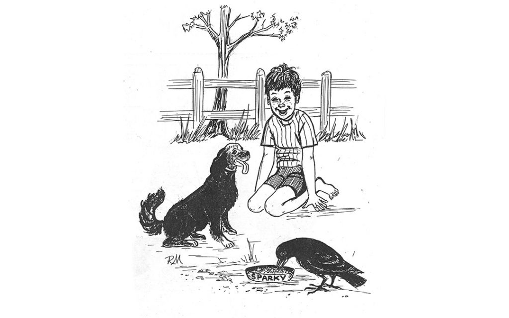 illustration of a boy with a dog and a crow